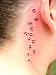 Kitty tracks tattoo