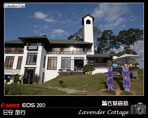 LavenderCottage_0073