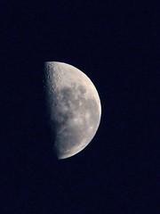 Luna menguante / Waxing moon