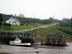 Low Tide at Dipper Harbour