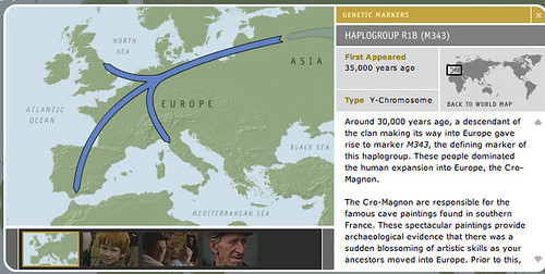 Haplogroup R1B M343