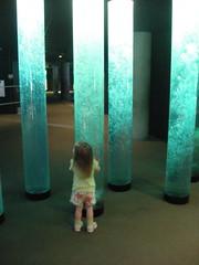Em at the bubble columns