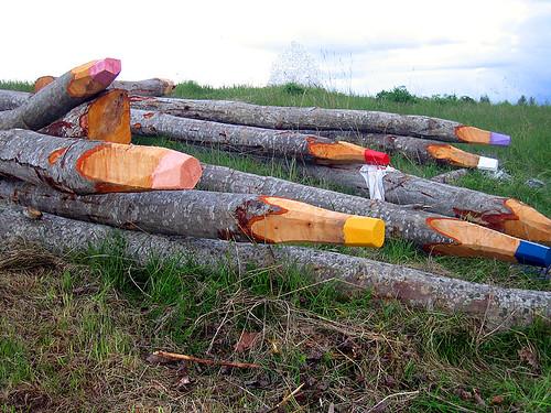 environmental art: colour pensils by dollydori