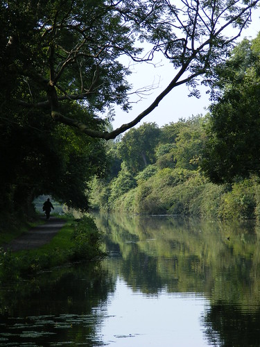 Chichester Canal