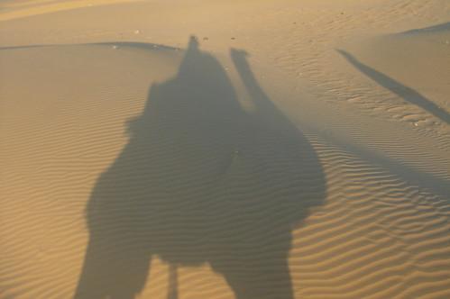 騎駱駝1-31自己的影�