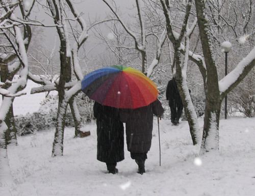 ombrello.jpg