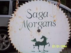 Saga Morgans