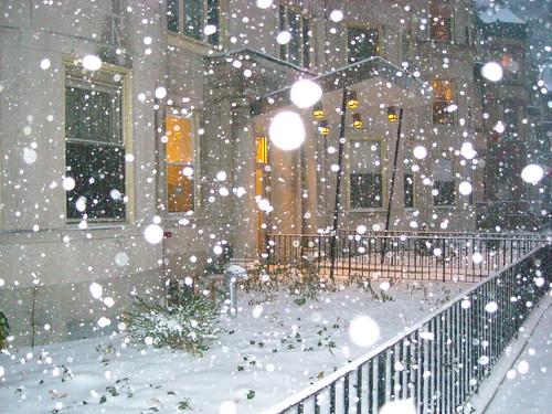 1477 Beacon Snow