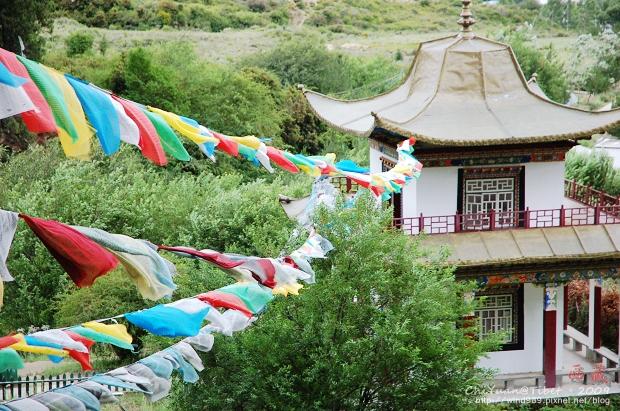 西藏林芝世界柏樹王園林13.jpg