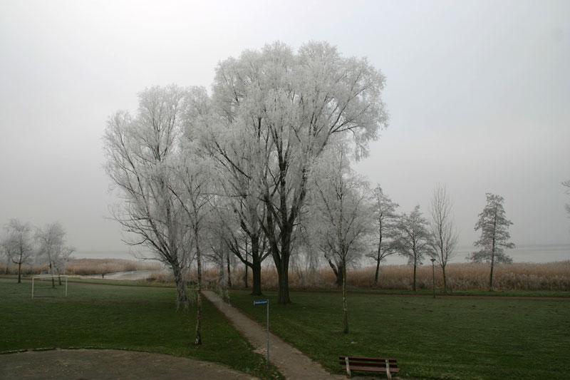 Uitsn.mist-IMG_8477a