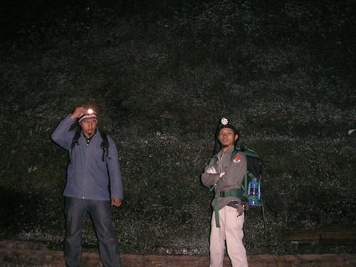 Foto Neon Sasaksaat
