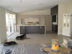 Kitchen with tiled floor and dogs