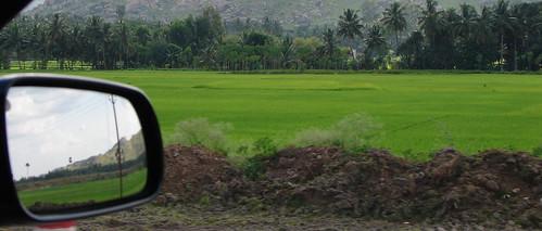 Reflections of farmland