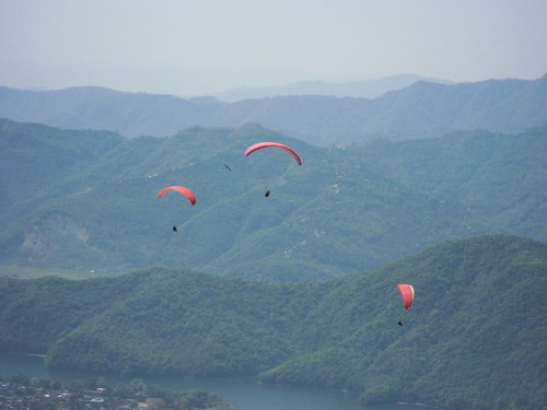 3 paragliders and 1 eagle take flight
