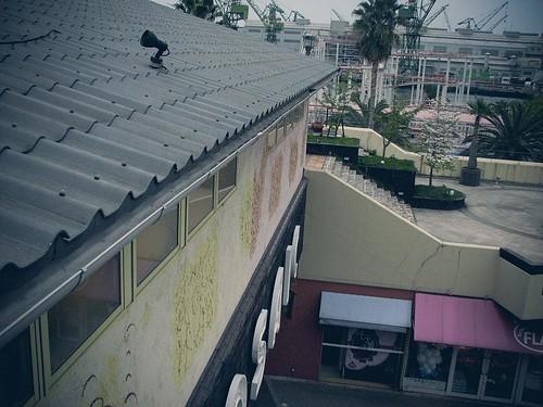 Mosaic이라고 적힌 노란 건물, 그 위의 지붕.