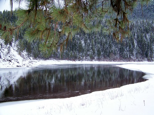 Clark Fork on the cutoff