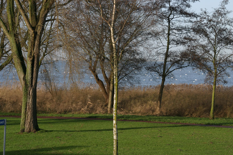 thuis02-IMG_8432