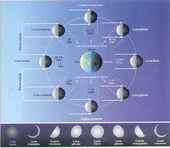 Fases lunares 002