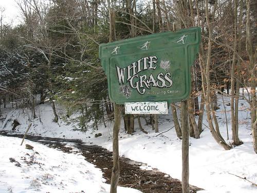 Whitegrass sign