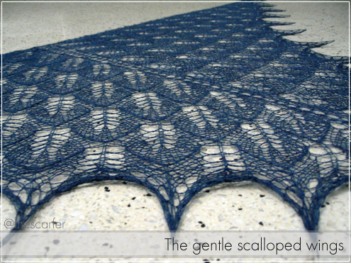 The gentle scalloped wings