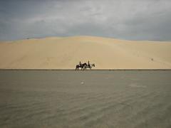 caballos_duna
