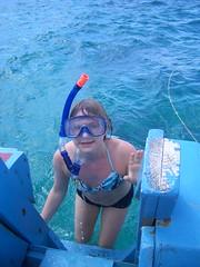 Buccoo Reef Snorkling