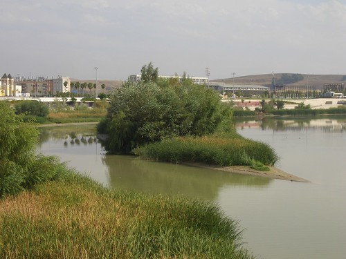 Isla del Molino. Rio Guadalquivir Córdoba.