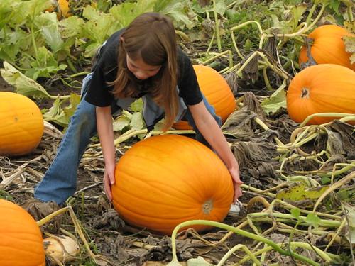 Liz in the Pumpkin patch
