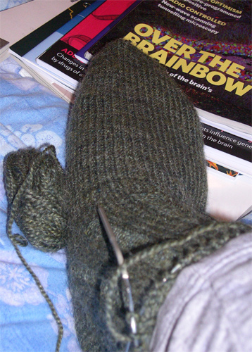 handspun sock 11/04