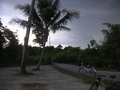 Singapore Day 09 Pulau Ubin 089