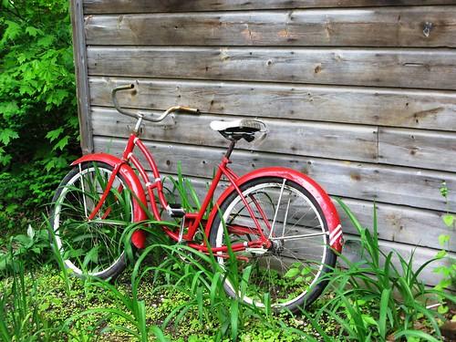 Red, Green, Bike
