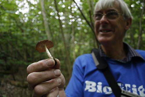 John Bailey with deer shield fungus