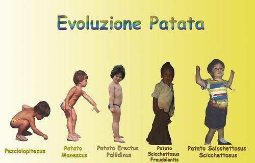 evoluzione patata.jpg