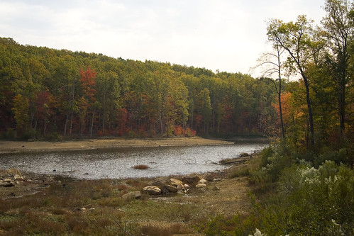 Lake at the NC Zoo