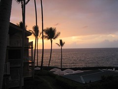 View from my lanai at Sea Village Resort
