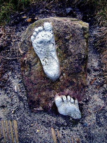 Fragmented Footsteps