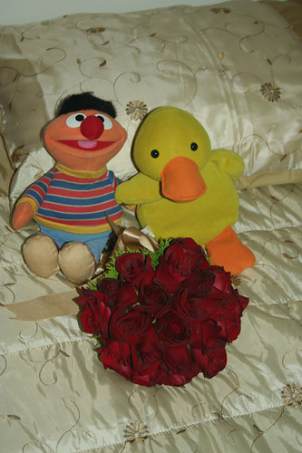 Ernie & Duckie