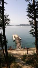 21.樹林,碼頤??及湖景