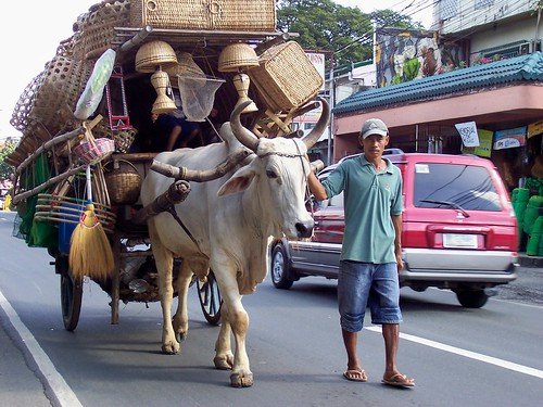 Plaridel Bulacan Basket peddling, basketware, road,  cart, handicrafts, cow, bull vendor travelling salesman Buhay Pinoy Philippines Filipino Pilipino  people pictures photos life Philippinen  菲律宾  菲律賓  필리핀(공화�)