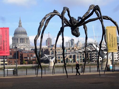 Spider size comparison