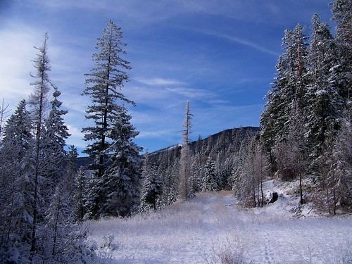 Winter on the divide