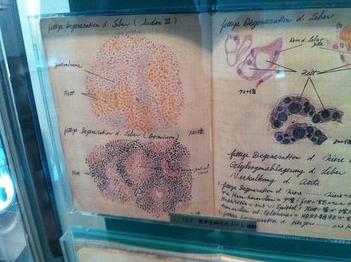 Tezuka medical sketches