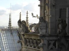 Notre Dame (33)