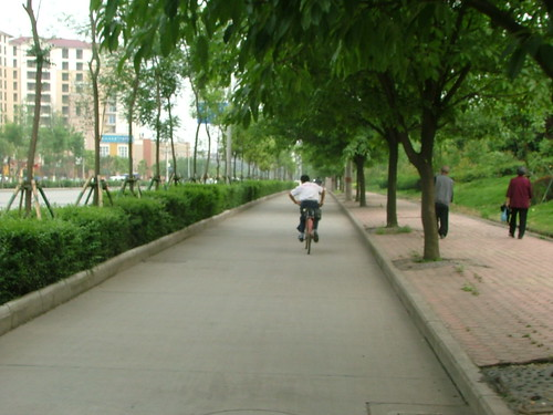 Bicycles of China (4/6)