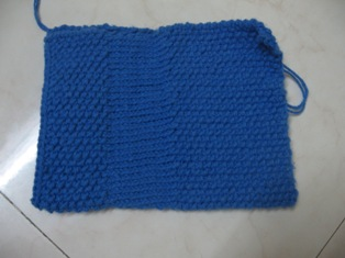 Swap1 Bag 2