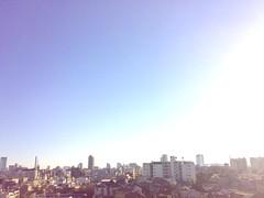 日本晴2008