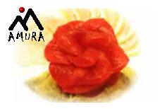 Amura image