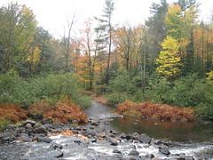 Autumn sight from the Arrowhead Park
