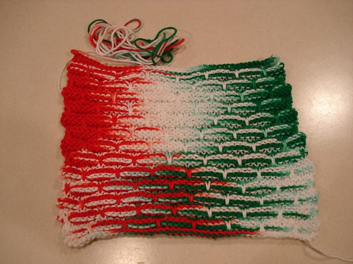 Holiday Dishcloth #1