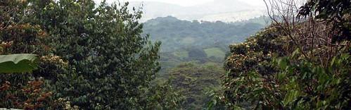 San Ramon landskab